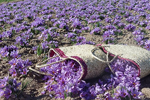 Zaffrus-Organic-Super-Premium-All-Red-Saffron-Threads-1-gram-035-oz