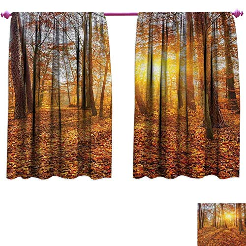 Autumn Leaves Large Blackout Curtain Fall Seasonal Orange Leaves in Trees Forest Wood Land Country Nature Scene Art Sound Insulating Draperies for Bedroom 108'' x 84'' Orange Brown