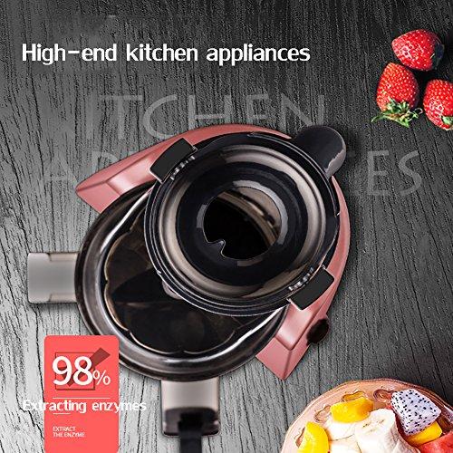 DULPLAY Large Diameter Juicer Juice Extractor,Bpa Free Premium Food Grade Stainless Steel Dual Speed Setting Juicer Machine,Bpa Free-Pink by DULPLAY (Image #2)