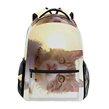 95cc9e44deeb Image Unavailable. Image not available for. Color  Backpack Things Your Cat  Wants ...
