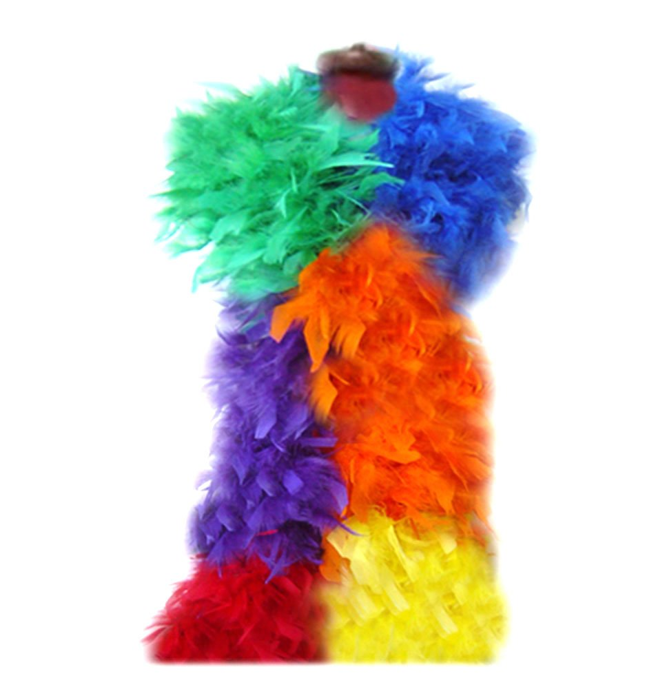 SACASUSA (TM) Fashion 100g Feather Chandelle Boa 6 feet long (10 colors to Pick) (Rainbows)