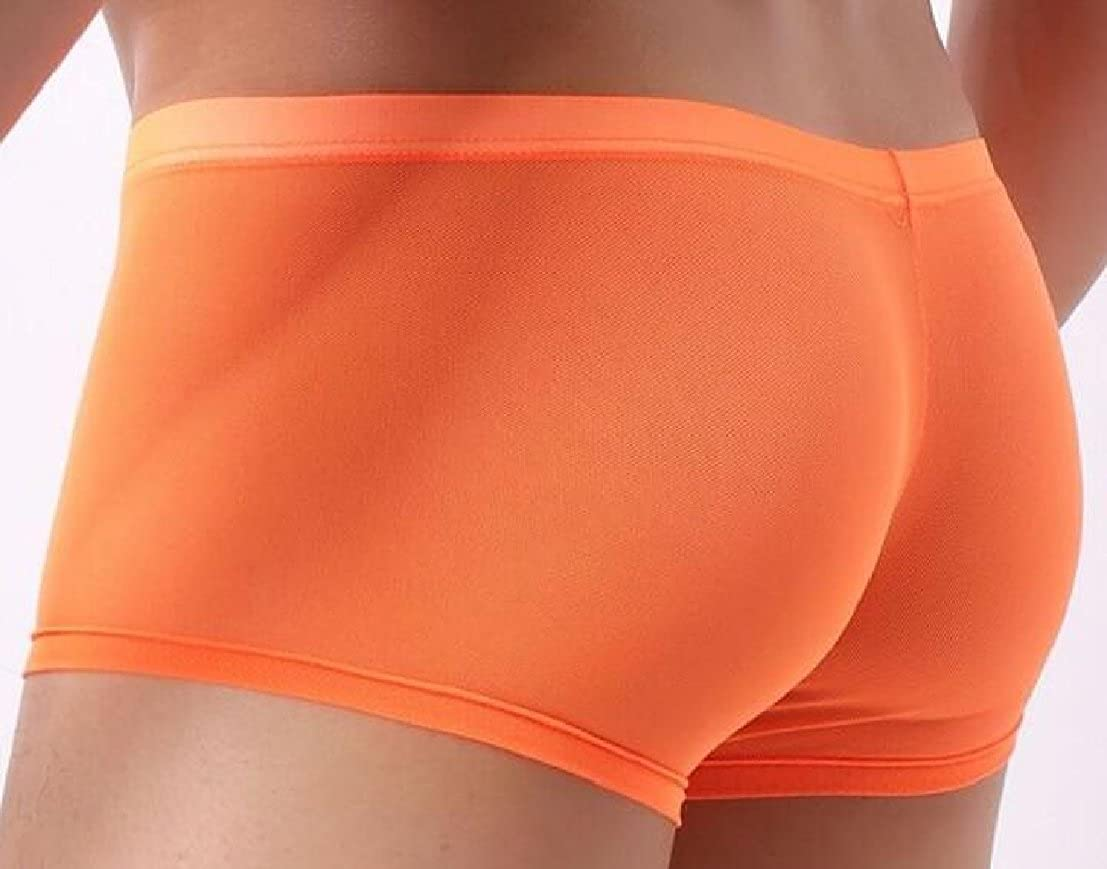 GenericMen Boxer Briefs Sheer Mesh Shorts Bulge Pouch Soft Underpants See-Through Underwear