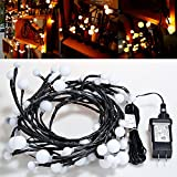 lychee Indoor Ball String Lights Ball String Led Lights 7.5ft/72 LEDs Halloween Christmas Home Seasonal Decoration Led Lights Wedding,Party Decorations Lights