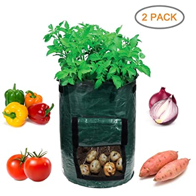 Garden4Ever Potato Planter Bags 2-Pack 10 Gallon Grow Bags Aeration Tomato Plant Pots with Flap and Handles : Garden & Outdoor