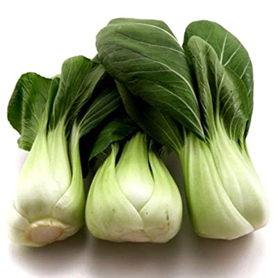 3, 250 Seeds Pak Choy Canton (1/4 oz)- Many Sizes Bok Choi Microgreens or Garden : Garden & Outdoor