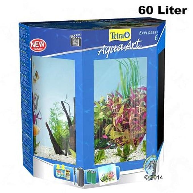 60 litros Half Moon Juego completo de acuario filtro luces peces tropicales: Amazon.es: Productos para mascotas