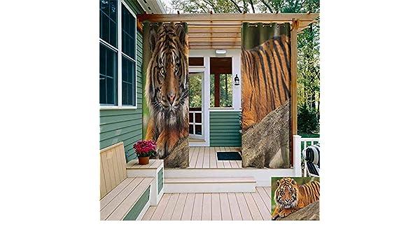 DONEECKL - Cortina para Exteriores con diseño de Tigre japonés, tamaño Grande, diseño japonés, Color Negro y marrón Claro: Amazon.es: Jardín
