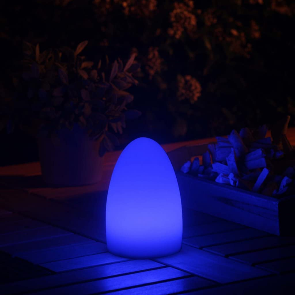 Smooz Egg Rechargeable LED RGB Table Light