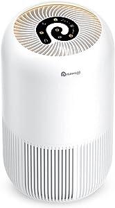 Purificateur d'air à filtre HEPA de Dreamegg