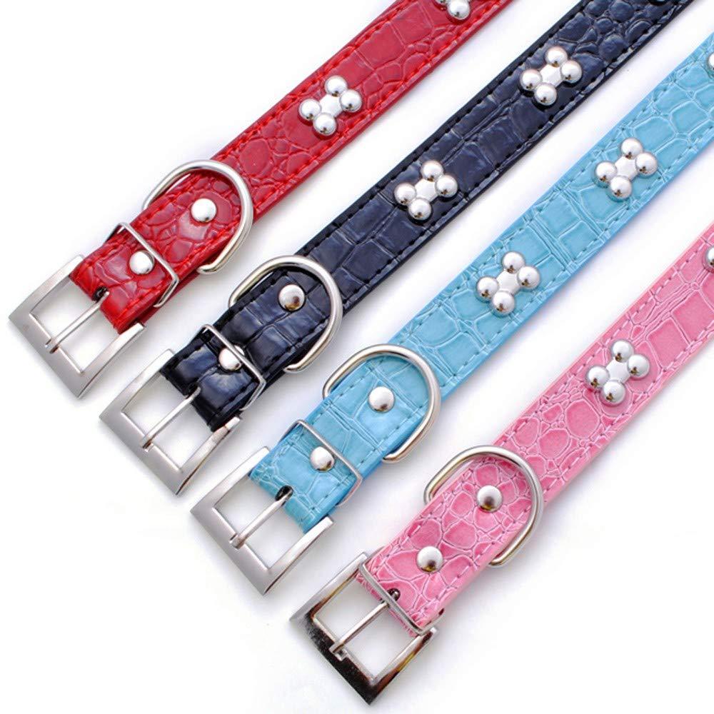 CAOQAO - Collar de Metal para Perro, diseño de Oso: Amazon.es ...