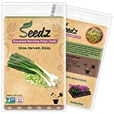 CERTIFIED ORGANIC SEEDS (Appr. 550) - Organic Green Onion Seeds - Heirloom Seeds - Non GMO, Non Hybrid Seeds - USA