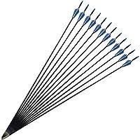 MILAEM 12 Piezas de Fibra de Vidrio de 30 Pulgadas Flechas de Tiro con Arco Flechas de práctica para niños Mujeres Principiantes
