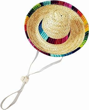 Amazon.com: Crazy Night Mini Sombrero Top Hat Headband ...