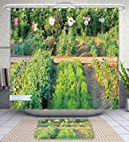 Amavam Bathroom 2-Piece Suit Many Different Vegetables In The School Garden Shower Curtains And Bath Mats Set, 60'' Wx72 H & 23'' Wx16 H