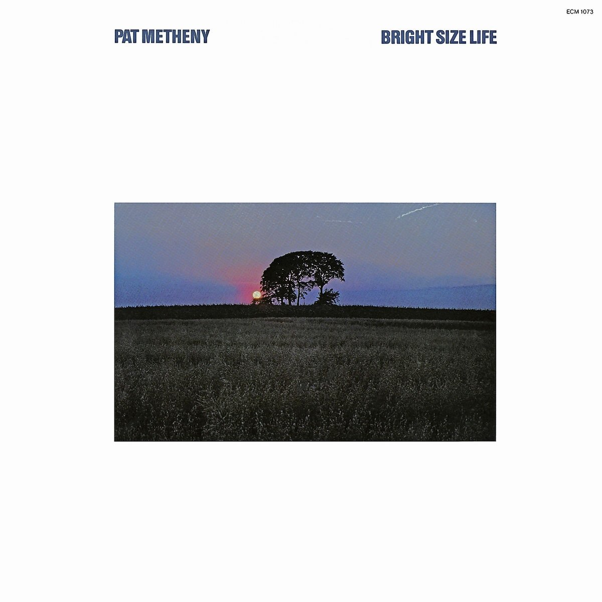 Bright Size Life by METHENY,PAT (Image #1)