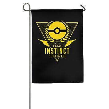 Team Pokemon Banners Readymade Garment Banners