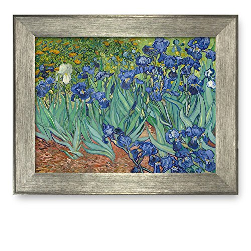 Irises by Vincent Van Gogh Framed Art Print Famous Painting Wall Decor Silver Frame