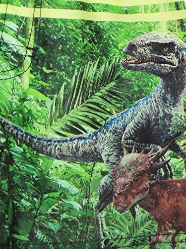 Universal Studios Jurassic World Dinosaurs Boy's Swimwear Swim Trunks (4,  Black/Green)