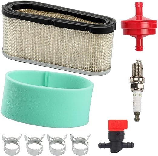 Amazon.com: 496894 272403S - Filtro de aire con filtro de ...