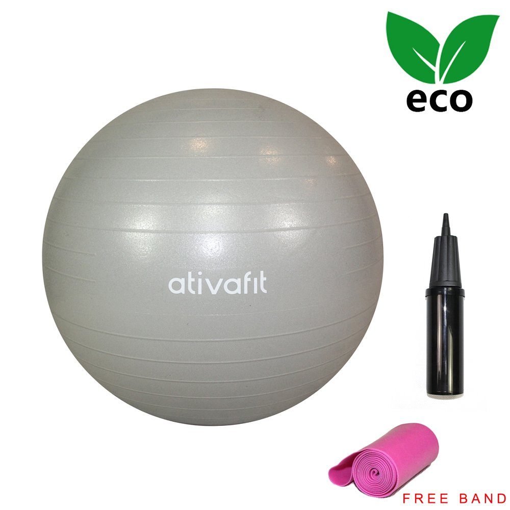 Ativafit Exercise 65cm Gym Ball Training Workout Yoa Ball With Band Hand Pump for Fitness, Gym, Yoga, Pilates, CrossFit etc.