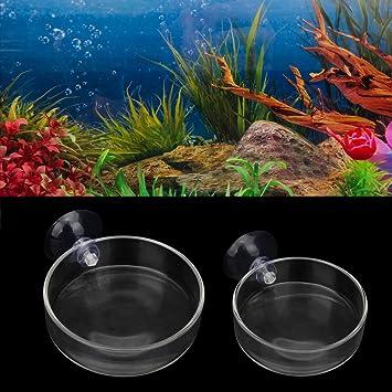 New Arrival Fish Tank Feeder Aquarium Shrimp Glass Feeding Bowl Dish Tray 6 Size