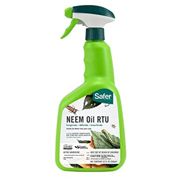 Amazon.com: Safer 5180-6 Neem Oil Ready-to-Use Brand Fungicide, 32 ...
