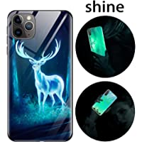 Funda iPhone 11, Luminosa Funda para iPhone 11