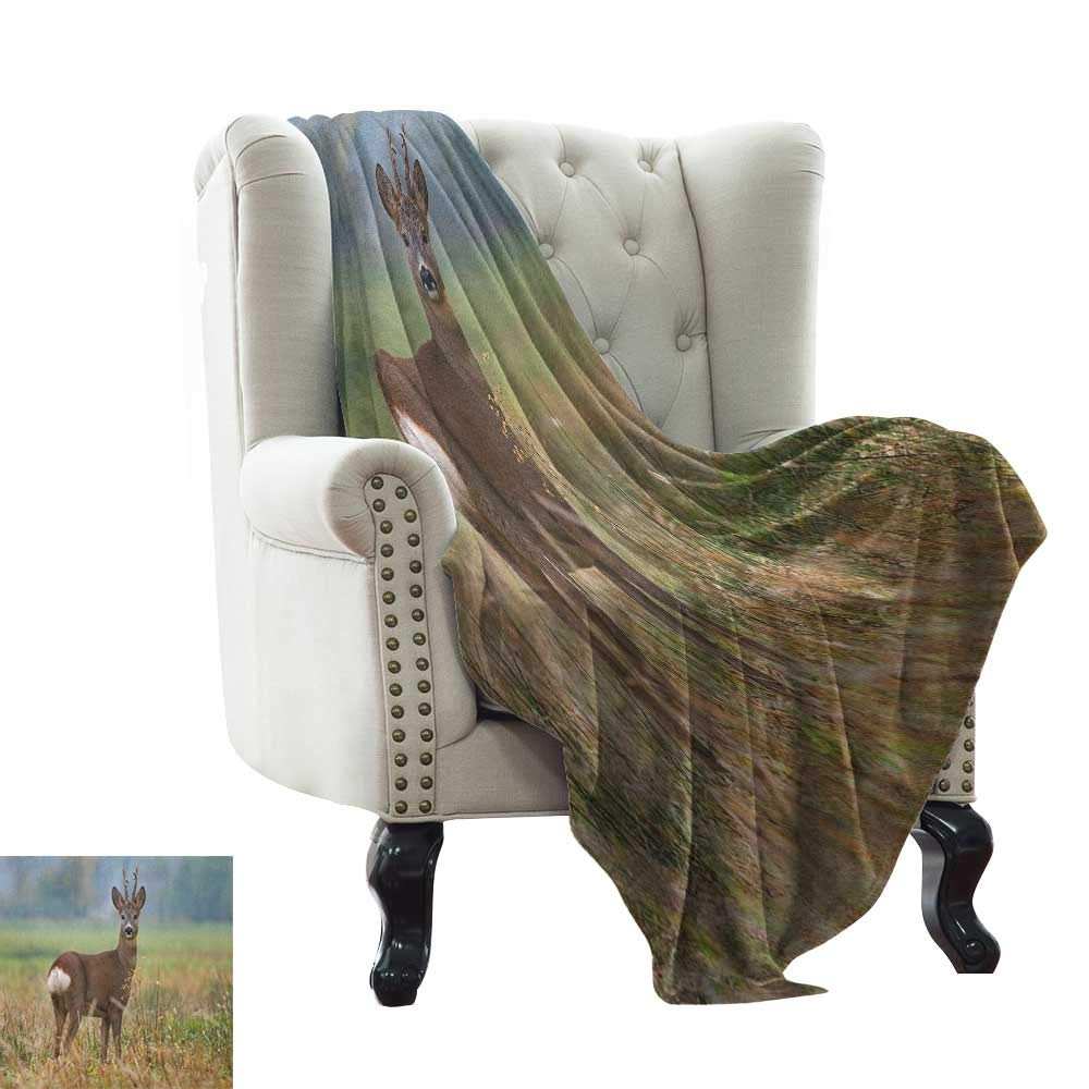warmfamily Hunting,Digital Printing Blanket,Roe Deer Male Capreolus Western European Wildlife Fauna Flora Meadow Field Grass 50''x30'',Super Soft and Comfortable,Suitable for Sofas,Chairs,beds