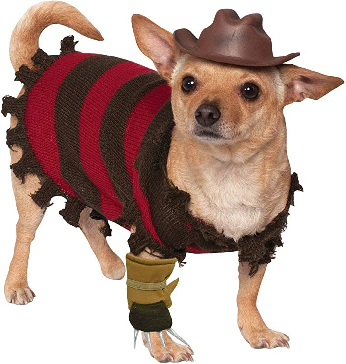 Disfraz para mascota - Freddy Krueger, perro talla M: Amazon.es ...