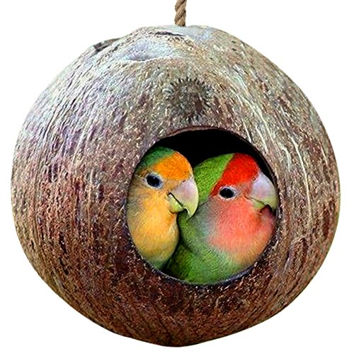 Natural Coconut Shell Bird House -- Nesting bird house for cage or outside - Finch, Parakeet, Sparrows' Eco-friendly Feeder - Natural texture encourages Foot and Beak Exercise - Includes hanging loop