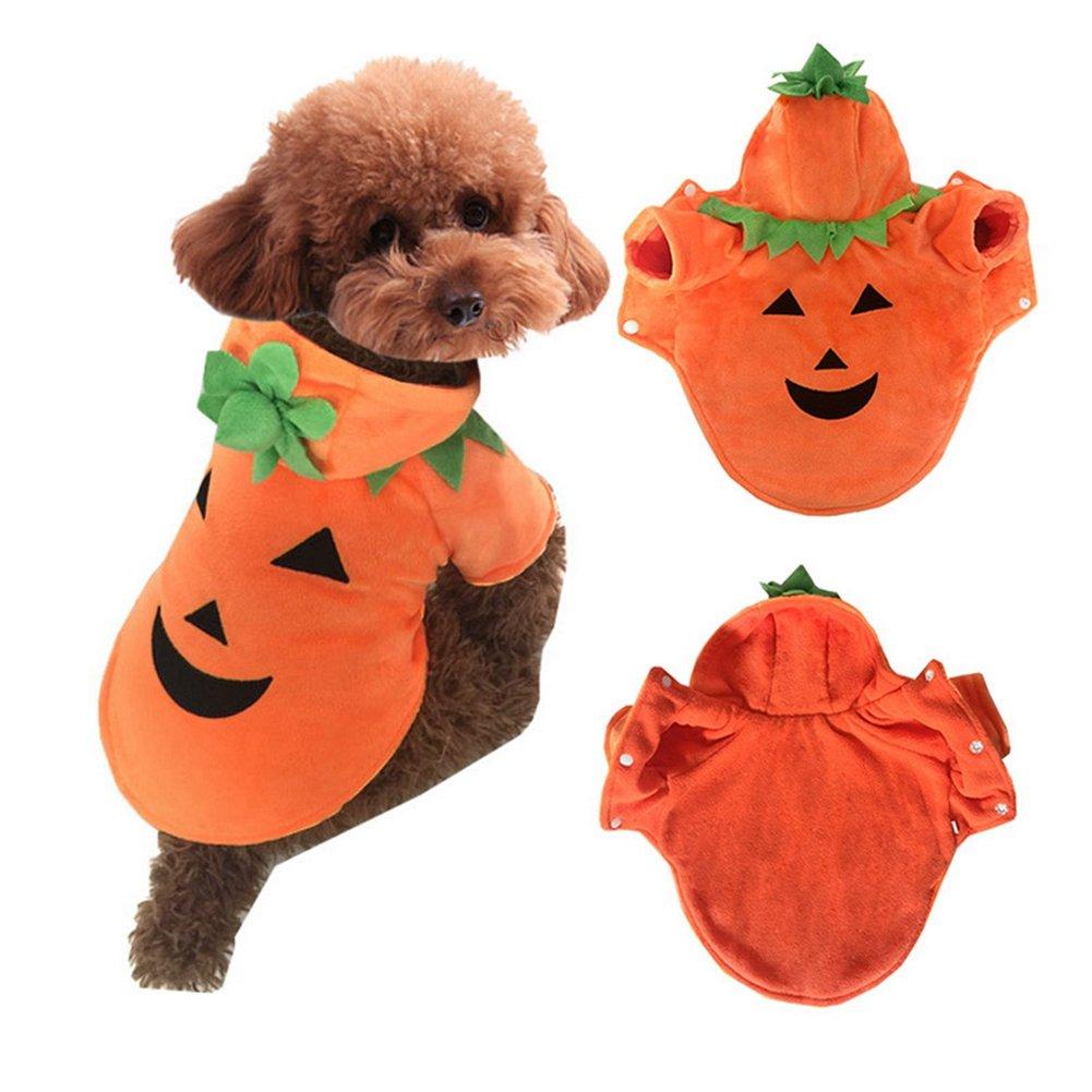 Il cane di animale domestico di modo copre il cappotto del costume della peluche della zucca di Hoodie di Halloween per l'animale domestico (XS) David Fast Shop