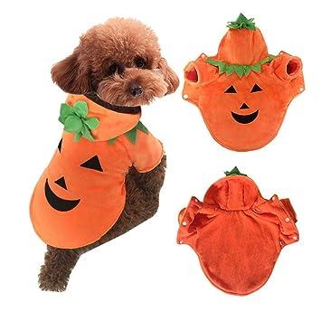 Moda mascotas ropa para perros Halloween Hoodie calabaza peluche traje de abrigo para mascotas (XS): Amazon.es: Deportes y aire libre
