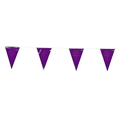 Fun Express 100 Ft Purple Pennant Banner 48 Flags Party Event Toy: Toys & Games [5Bkhe0906008]
