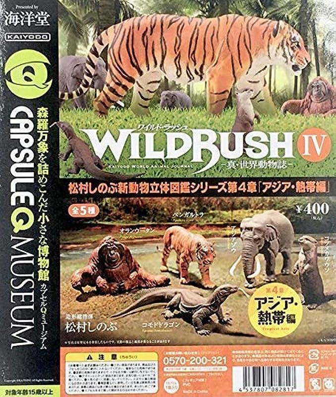 카이요도 캡슐Q박물관 WILD RUSH 진실・세계 동물지 제4 탄 아시아・열대편 전5종