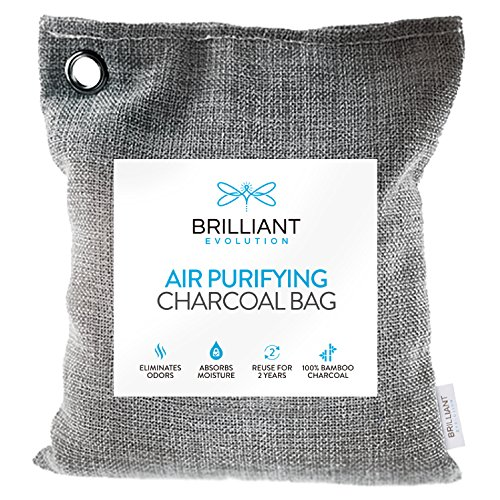 Brilliant Evolution BRRC203 Natural Bamboo Charcoal Air Purifying Bag, Odor Eliminator and Air Freshener for Cars, Closets, Bathrooms, Pet Areas, and RV, 1 Pack (1 Bamboo Charcoal Bag), 220G