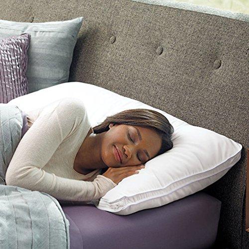 Brookstone BioSense Select Sleep Pillow with Medium Support