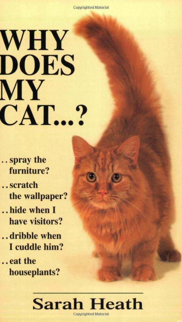 Why Does My Cat . . . ? (Why Does My . . . ? series) pdf