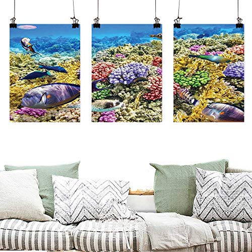 Agoza Canvas Wall Art Ocean Undersea Scenery Colorful Sponge Coral Reefs Tropical Fishes and Jellyfish Image Office Art Decoration 3 Panels 24x35inchx3pcs Multicolor