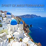 Mediterranean Spirit - unique 24bit WAVE Multi-Layer Studio Samples Production Library on DVD or download