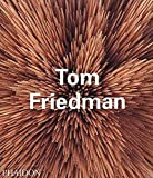 img - for Tom Friedman (Contemporary Artists) book / textbook / text book