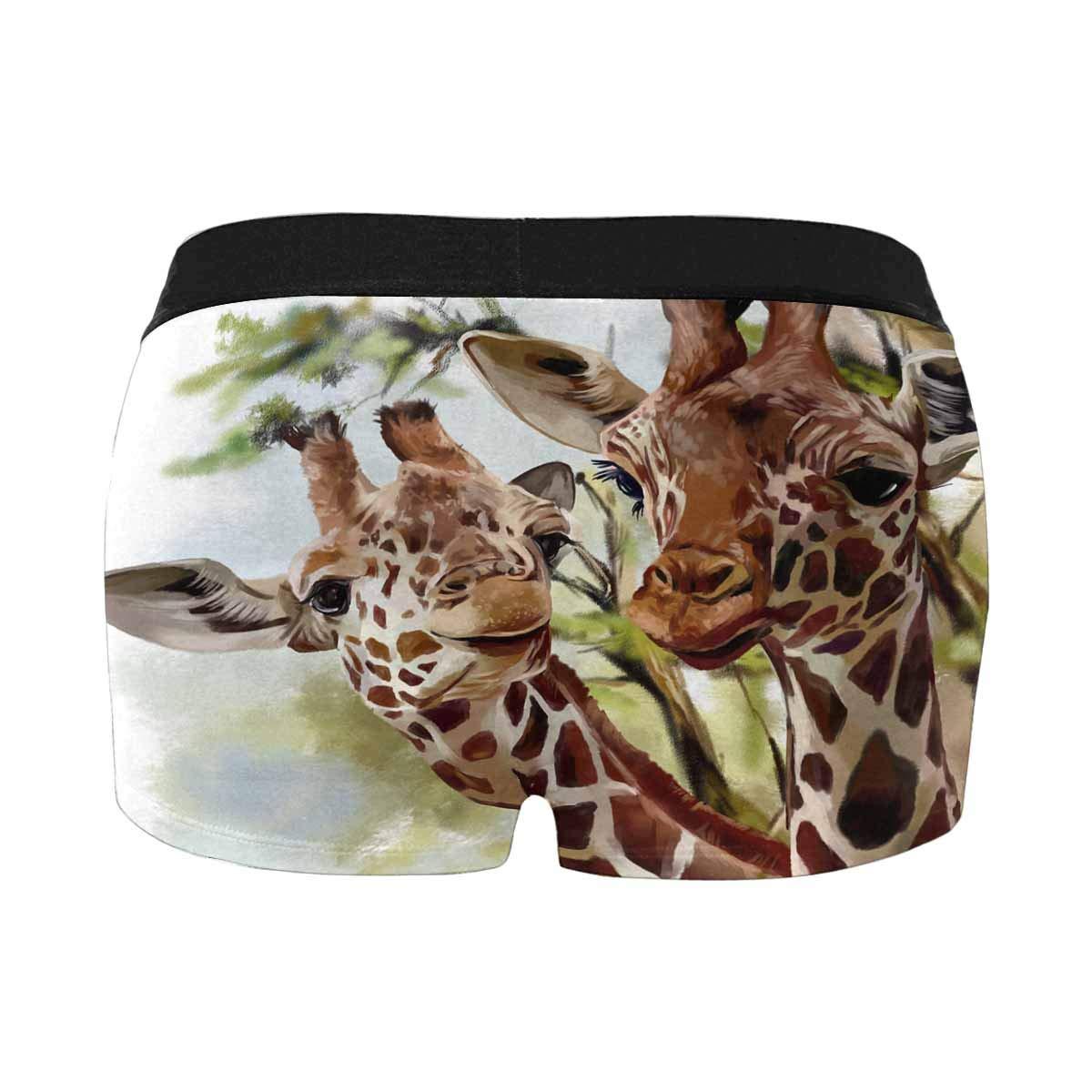 XS-4XL INTERESTPRINT Mens Underwear Boxer Briefs
