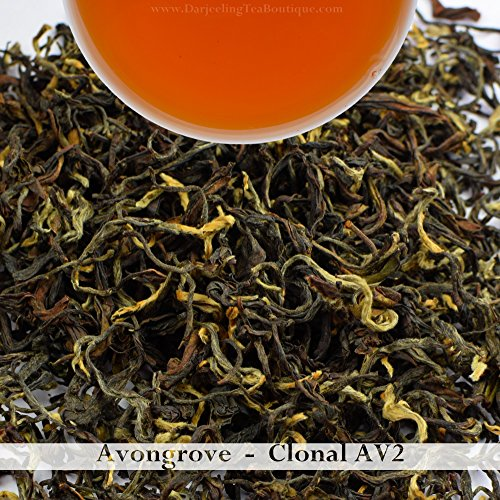 2017 AV2 Cultivar | Darjeeling 2nd Flush Tea | 500gm (17.63oz) | Pure Oragnic Tea from Avongrove | Bulk Wholesale Pack | Darjeeling Tea Boutique by Darjeeling Tea Boutique