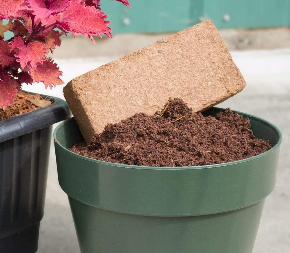 8L Natural Certified Product Peat Moss Alternative Garden Potting Mix Organic Premium Coco Coir Brick Great Seed Bed Senua 650g