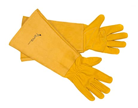 Merveilleux Premium Elbow Length Gloves For Thorns, Rose Gloves, Cactus Gloves,  Blackberry Gloves,