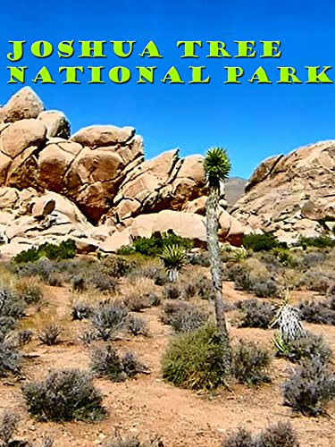 joshua tree national park cougars personals Climate change endangering national parks, says report twenty-five national parks are threatened by climate change, including mount rainier national park in washington, say the natural resources defense council and.
