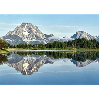 Grand Teton National Park Lake Reflection Mountains 1000 Jigsaw Puzzle Wooden Jigsaw Jigsaw Floor Jigsaw Puzzle Adult Animal Jigsaw Children Intelligence Game Learning Education Decompression Toy: Toys & Games