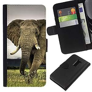 All Phone Most Case / Oferta Especial Cáscara Funda de cuero Monedero Cubierta de proteccion Caso / Wallet Case for LG G2 D800 // Cute Elephant Majestic Creature Animal