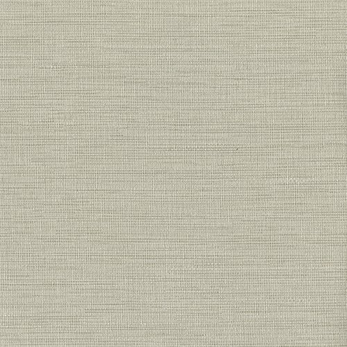 Warner 2741-6067 Giana Horizontal Silk Wallpaper, Beige