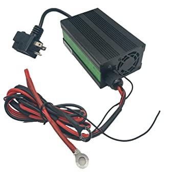 Amazon.com: LiFePO4 Battery Charger 3.65V 10A for Golf-carts ...