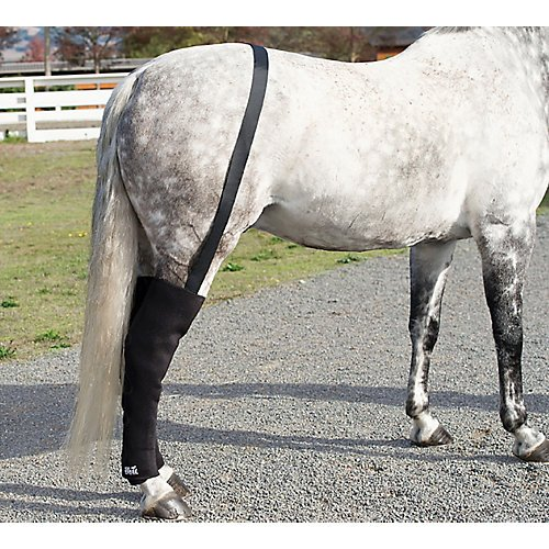 Horse Eqine Full Hind Leg Wraps- Pair with Suspender Belt and 16 Cold Inserts by Ice Horse